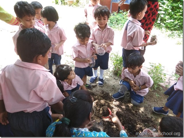 sowing activity (1)