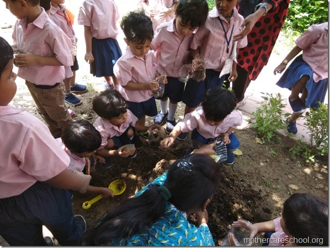 sowing activity (2)
