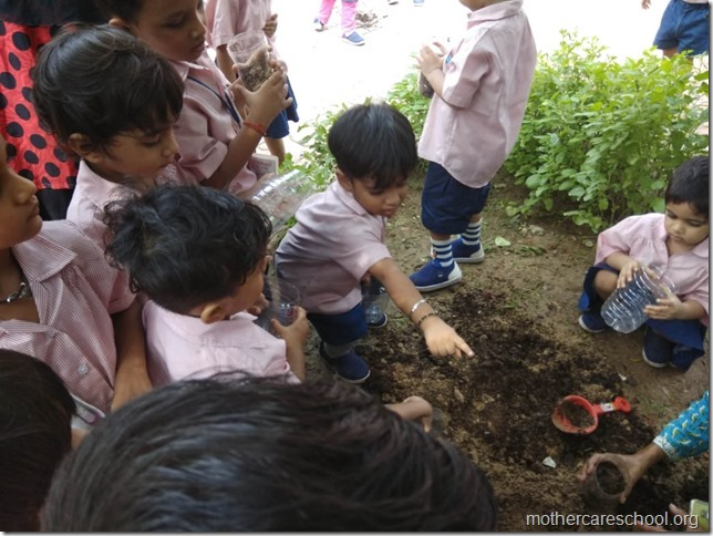 sowing activity